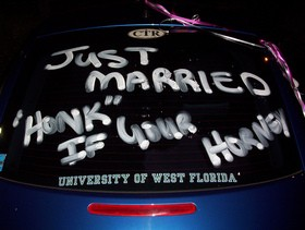 Wedding car decorations - Just Married - Honk If You're Horny!
